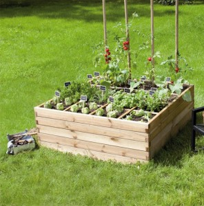 installer-un-carre-potager