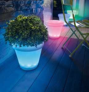 Pin by xavier b rub on plante pinterest - Pot de fleur lumineux ...
